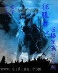 征服者之占據東瀛當反賊